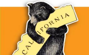 California Galaxy Design